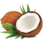 食べても肌に塗ってもOK!ココナッツオイルの万能すぎる効果・効能と使い方